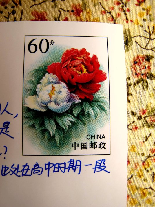 Qingyang 02